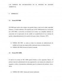 LAS NORMAS ISO ESTABLECIDAS EN EL SISTEMA DE GESTION AMBIENTAL