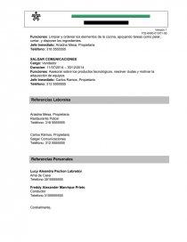 Formato Hoja De Vida Sena Para Empresas Documentos De