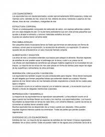 Los Equinodermos Resúmenes Sofia0345