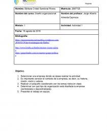 Diseño Organizacional Actividad 1 Grupo Bimbo Ensayos